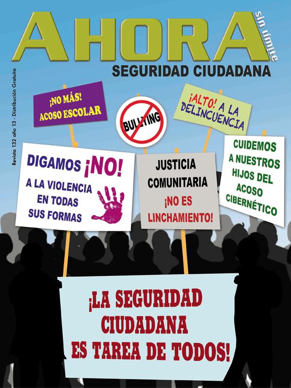 Revista 132 Año 13